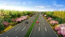 广平道路设计方案